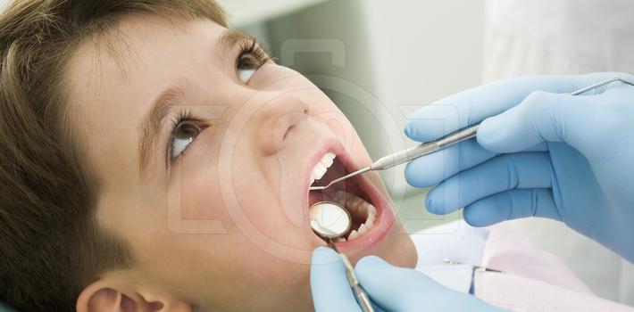 Обеспечение правильного роста коренных зубов